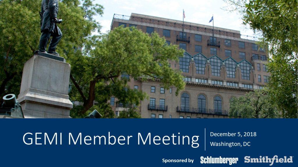 Meetings - GEMI